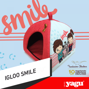 sonrisas-igloo